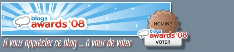 750-Blog_Awards_08_Voter